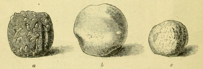 image of three Irish slingshot balls