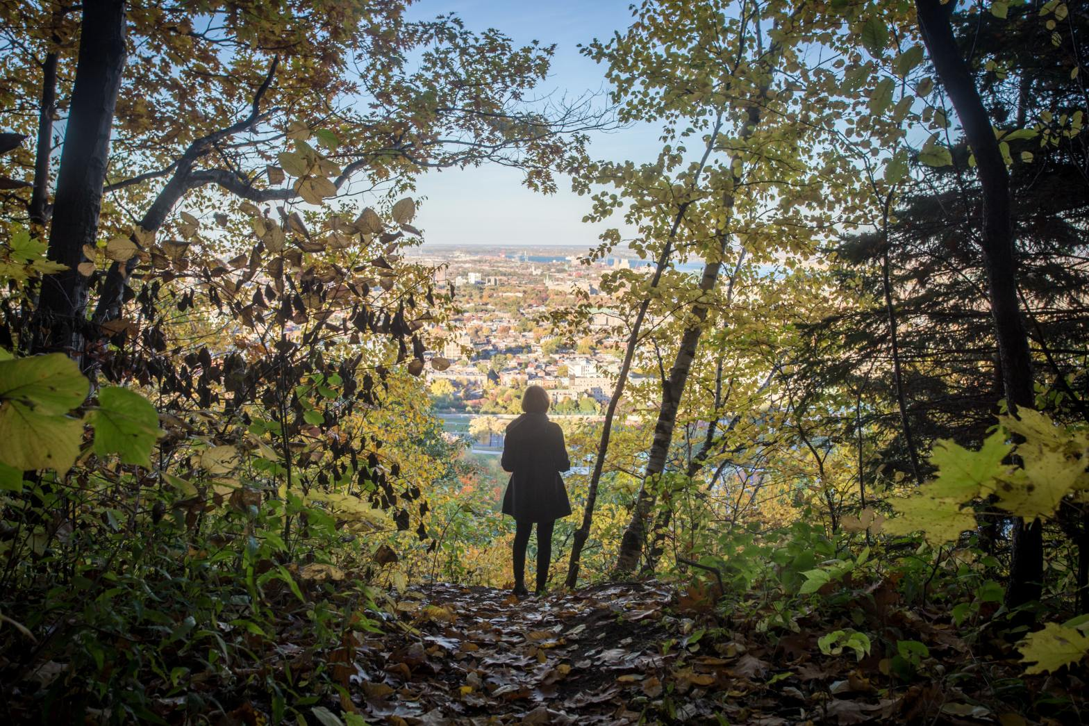 photo of person looking at Montreal from atop Mount Royal