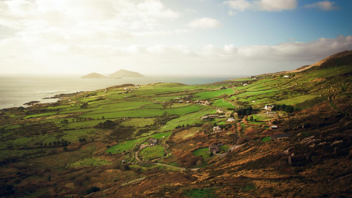 photo of green fields in Ireland