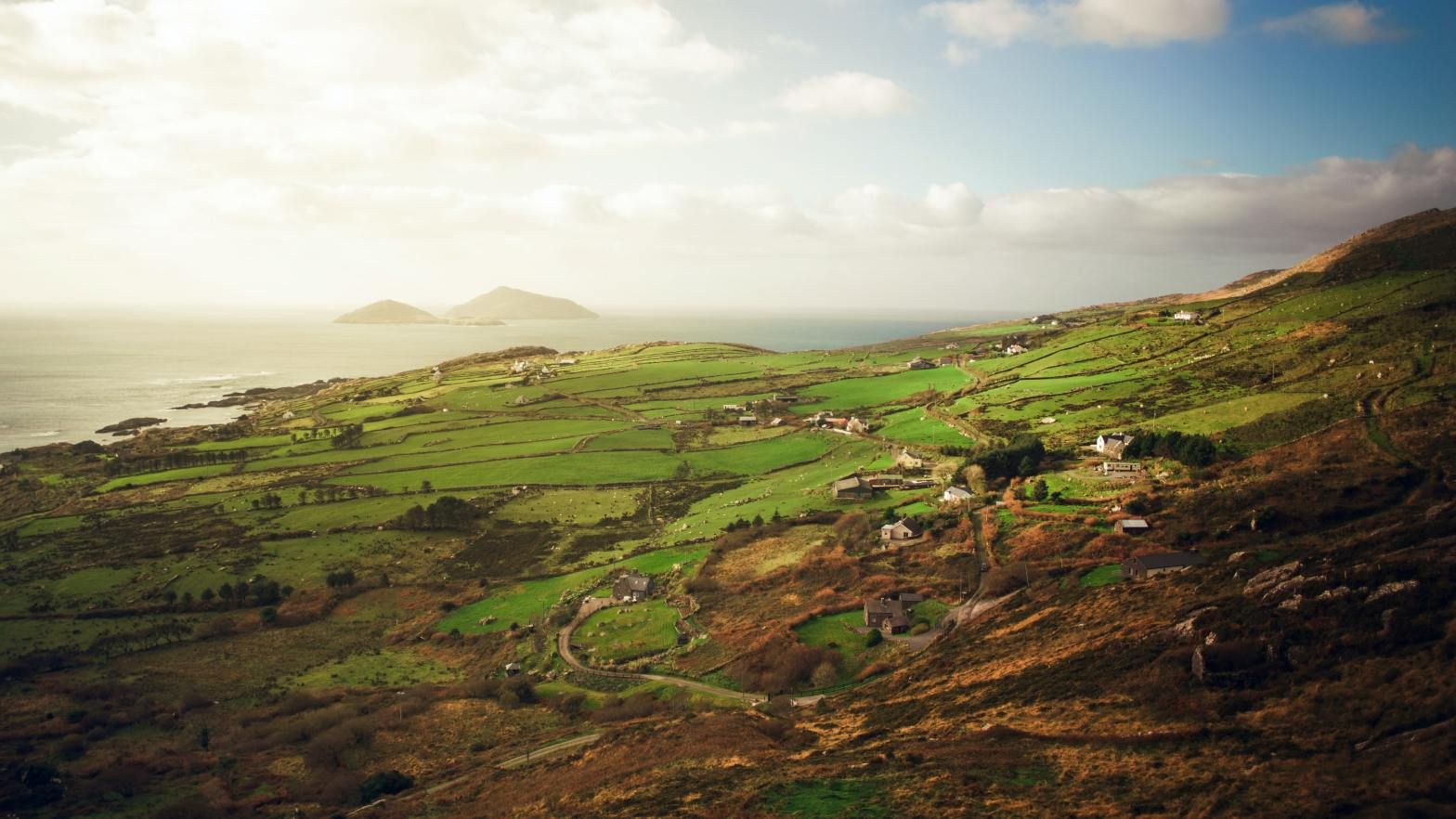 photo of green fields in Ireland