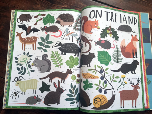 photo of inside the book Irelandopedia highlighting Ireland's land animals