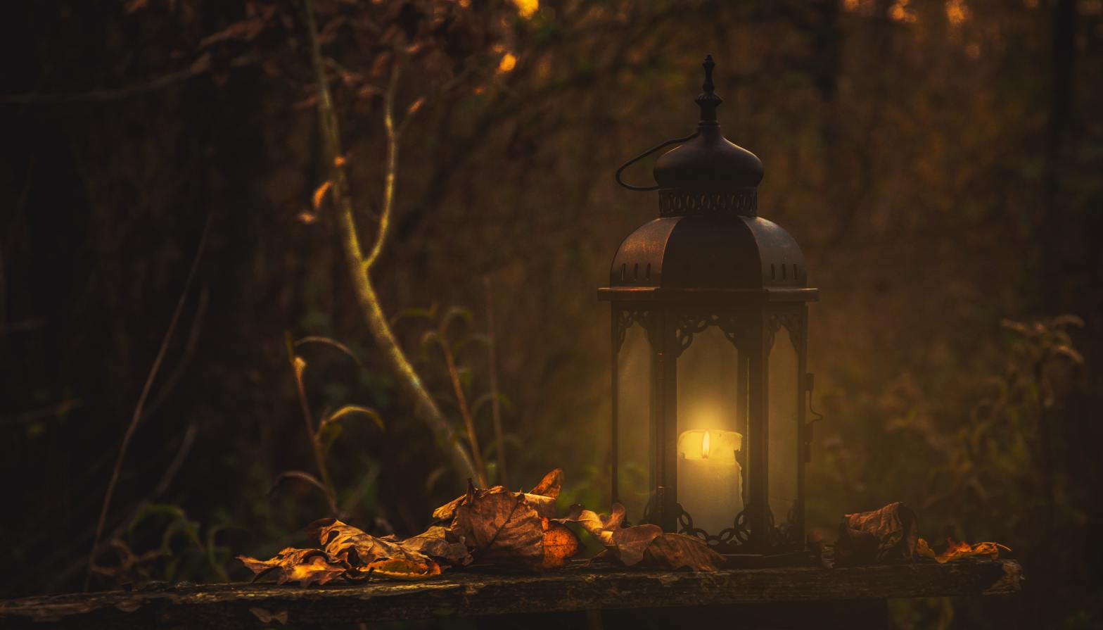 photo of lantern in a spooky fall setting